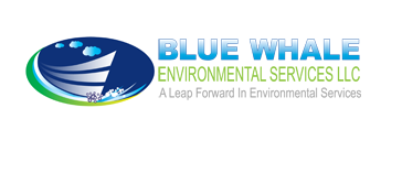 Blue Whale Environment Services LLC - Logo